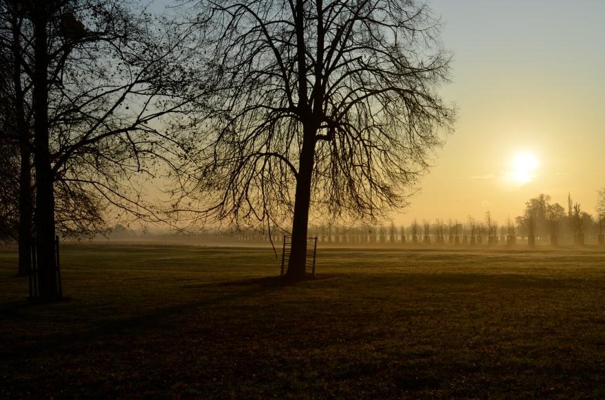 Hampton Court and Riverside views